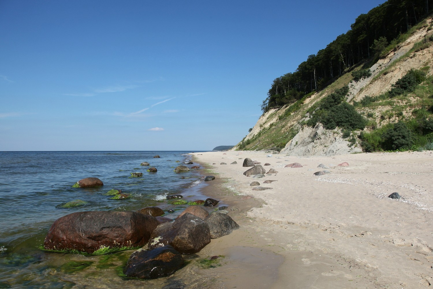 Wolinian cliffs are part of the most beautiful stretch of Polish coast of the Baltic Sea (photo by Sebastian R. Bielak)